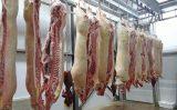 Um recorde para as exportações de carne suína em 2020