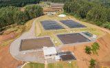 Dejetos suínos podem ser transformados em energia, fertilizante e água através de uma nova tecnologia