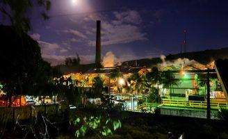 Usina Pernambucana aposta na produção de açúcar e menos no álcool na safra deste ano