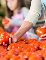 A importância de cultura do tomate para o agronegócio e o país