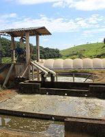 A maneira correta de tratar os resíduos de animais e humanos no campo