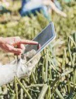 Cursos de capacitação em cooperativismo para agricultores familiares