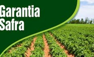 Produtores de 27 municípios em sete estados vão receber o Garantia Safra este mês