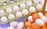 Crescem as exportações brasileiras de ovos para o mundo