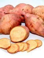Uma semente de batata-doce biofortificada é certeza de mais renda para o agricultor
