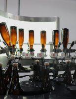 Mercado de vinhos do Brasil está crescendo